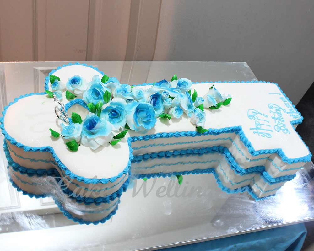 21st Birthday Cake And Cakes For Girl Boy Designs From Cake Wellington